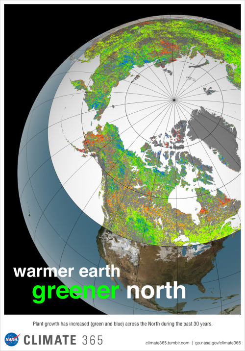 "climate365:   Vegetation growth at Earth's northern latitudes increasingly resembles lusher latitudes to the south. The trend toward a greener North is evident in this visualization – based on land surface and satellite data – that shows how plant growth changed across the 10 million square miles (26 million square kilometers) of northern vegetated lands during the past 30 years. Of the North's total vegetated land area, 34 to 41 percent showed increases in plant growth (green and blue), 3 to 5 percent showed decreases in plant growth (orange and red), and 51 to 62 percent showed no changes (yellow).  The changes are driven by enhanced warming and longer growing seasons in the North, which have led to large patches of vigorously productive vegetation that now span a third of the northern landscape, or more than 3.5 million square miles (9 million square kilometers). This landscape resembles what was found 250 to 430 miles (400 to 700 kilometers) to the south in 1982. ""It's like Winnipeg, Manitoba, moving to Minneapolis-Saint Paul in only 30 years,"" said co-author Compton Tucker of NASA's Goddard Space Flight Center in Greenbelt, Md., in NASA story describing the research published March 10 in the journal Nature Climate Change.  Visualization credit: NASA's Goddard Space Flight Center Scientific Visualization Studio"