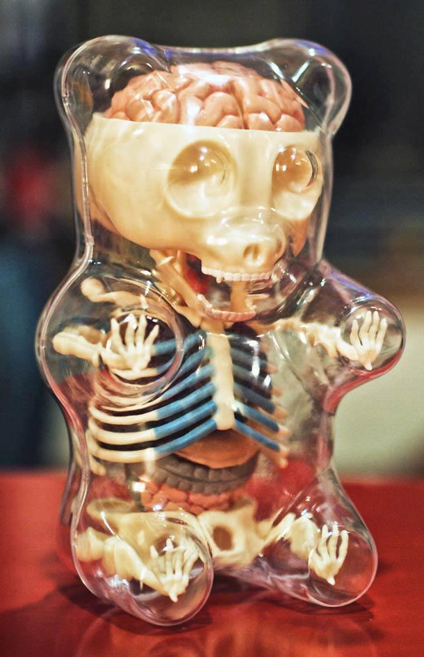 The anatomy of a gummy bear