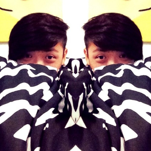 Meet my twins lol Zebra print quilt cover = Awesome