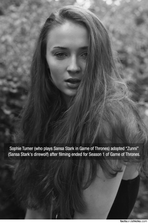 "factsandchicks:  Sophie Turner (who plays Sansa Stark in Game of Thrones) adopted ""Zunni"" (Sansa Stark's direwolf) after filming ended for Season 1 of Game of Thrones. source  I LOVE HER SO MUCH"