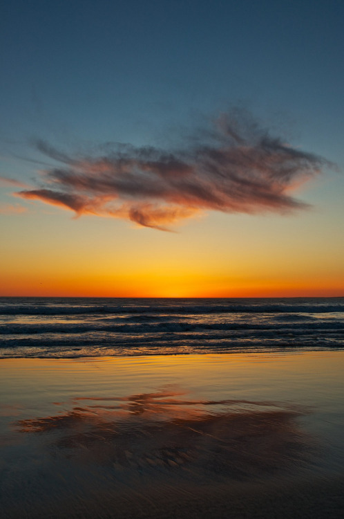 touchdisky:   Venice Beach, California, USA by hoagie_mcfly