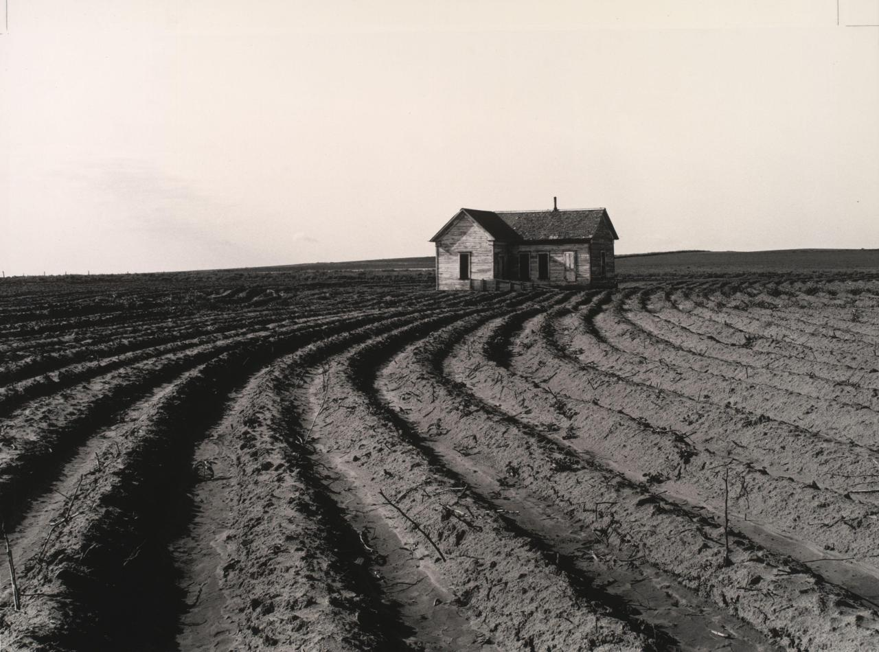 icancauseaconstellation:  Dorothea Lange, Tractored Out, Childress County, Texas, 1938