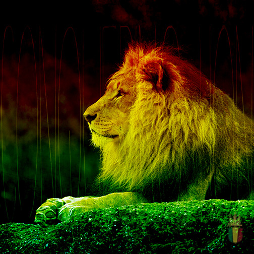Rasta Empire Conquering Lion Of Judah