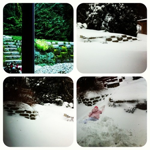 #before #after #snow in the #garden #winter ? #iphonephoto #photooftheday #bestoftheday #iphoneography #iphoneonly #iphonesia #instamood #instagood #instahunig #szifoncomtel #iponthu #mik #GetMeRated  (at Francsics's Home)