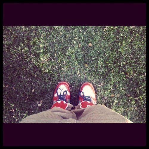 Hit up A'ala Park, so I had to rock 'em SBs. #wdywt #Nike #skateboarding #sb #shoegoo #levis #aalapark #Honolulu #Hawaii #iss #solecollector #walklikeus #wlu #kicks4eva #loveformykicks #sneakerfreaker #nsborg #kicks0l0gy