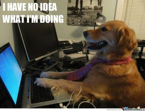 "This is me right now with this new found ""website""….. I have no idea what I'm doing."