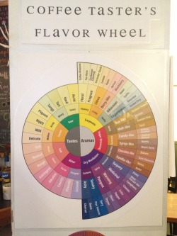 ilovecharts:  Coffee flavor chart at my local coffee shop, Mocha Joe's, in Brattleboro, VT -Tim Guarente