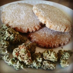 A friend brought over pot cookies made from his trimmings. #potfood #marijuana #cannabis #stonerfood #420 #onelove #buds #trimmings #bluedream #snickerdoodles #cookies #bakingwithweed #bakingwithmarijuanna #baking #weed #nugs