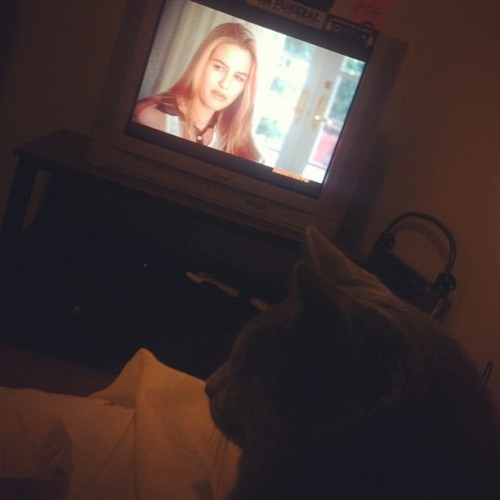 #clueless with sly. #sundaynight #perfection #nickatnite