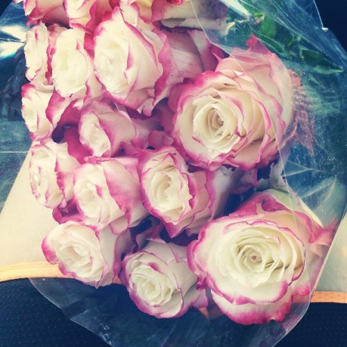 alejandra-jackie:  Just because I love you flowers & breakfast…great way to start off my morning. I have to admit I have an amazing bf..ily♥ @jr2849 #beautifulflowers #justbecause #ily #breakfast #greatmorning #loveyou #2infinity&beyond
