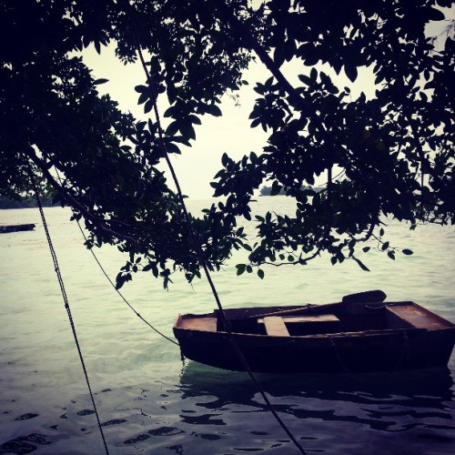 Alone… #boat #webstagram #photography #photooftheday #photowall #landscape #love #island #water #TAGSTAGRAM. com #relax #row #green #romantic