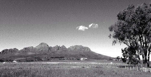 The Winelands on Flickr.