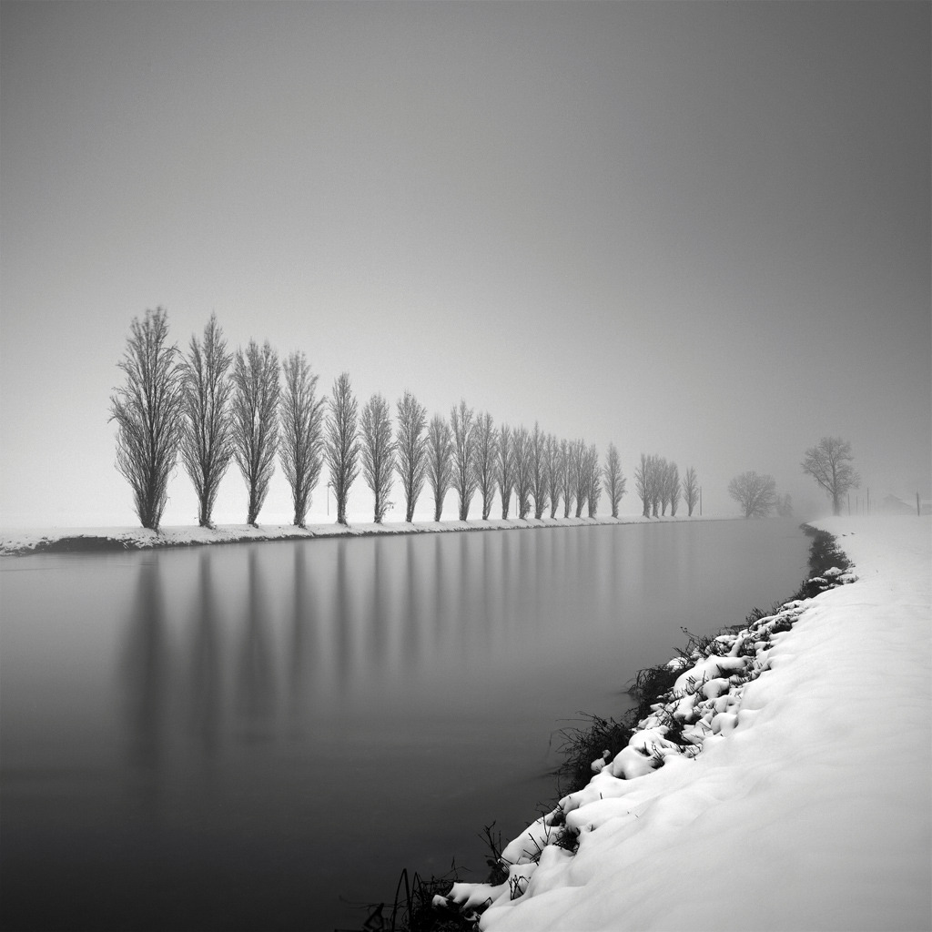 elinka:   Strictly motionless in the chill of winter Pierre Pellegrini