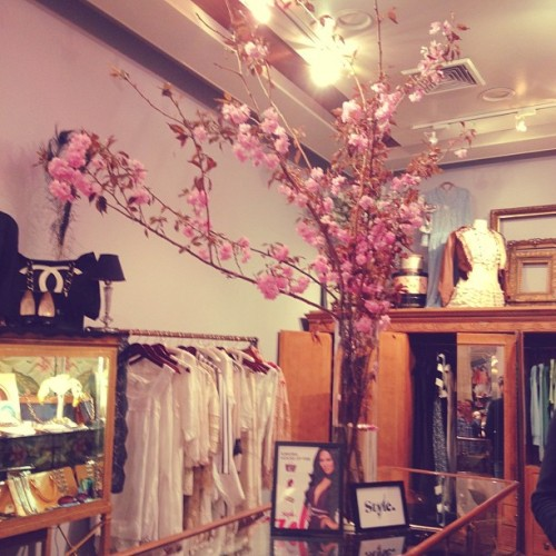 blossoming branches from our style network event!