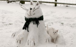 allcreatures:   Phil Gooding from Hilderstone, Staffordshire made Frosty the Snowcat…obviously in the image of his namesake (right)  Picture: Phil Gooding (via UK weather in pictures: More readers' photos of snow and freezing temperatures - Telegraph)