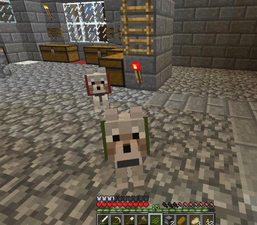wheatoncastle:  Wheaton Castle now has puppies! Thanks to Crimson_Regret! This is Marlowe (red) and Riley (green). Seamus is off somewhere. Getting into all kinds of great trouble no doubt. His collar is/will be black.  I don't know how to change puppy skins like people can with kitty skins. I got some raw fish to find some cats though, hopefully… The castle rebuild is coming along. (I keep typing rebuilt. IDEK.) ~Leia_Elhromane /warp WheatonCastle
