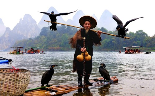 An elderly fisherman and his cormorants used for fishing are seen on the Lijiang River in Gulin, southwest China's Guangxi Zhuang Autonomous Region  Picture: Imaginechina / Rex Features (via Pictures of the day: 4 March 2013 - Telegraph)