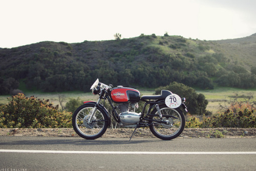 Gilera Milano Taranto // Hugo Gallina by southcount on Flickr.