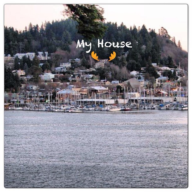 My house. Just up from the Kingston Ferry & Marina.