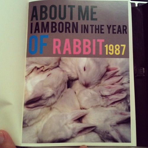 Yes I created that. Rabbit me. So cute so coy. #houseofpipi #zodiac #1987 #id #typography #lookbook #journal