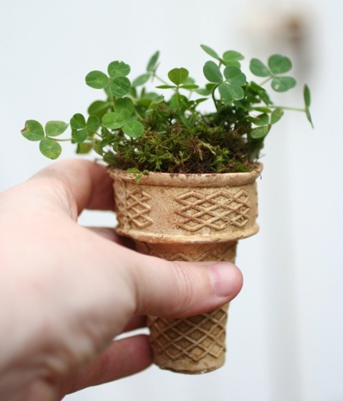 beatpie:  start seeds in ice cream cones and plant in to ground….how clever, biodegradable