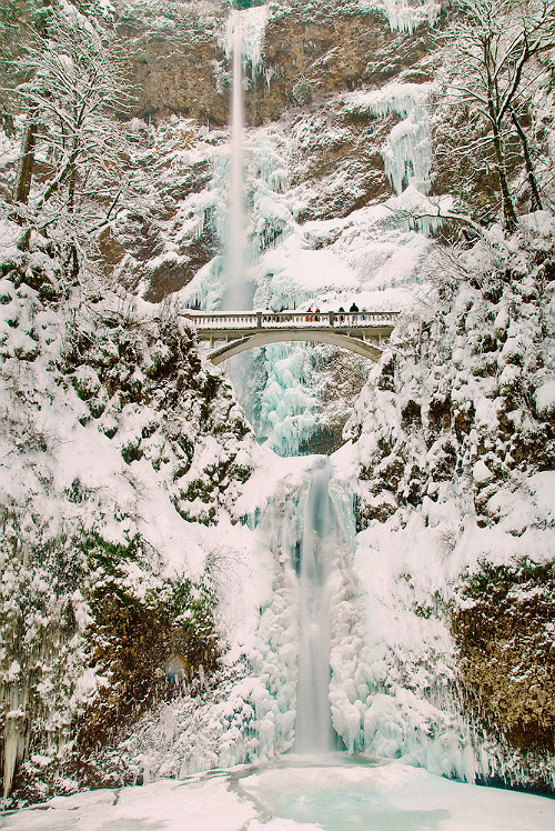 hellanne:  Multonomah Falls Ice and Snow (by Marshall Alsup)