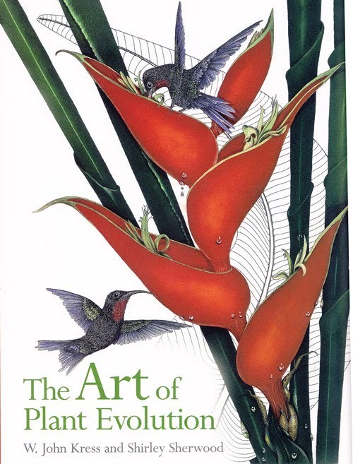 The Art of Plant Evolution by W. John Cress and Shirley Sherwood 'Art meets science' in this beautiful book that aims to give readers a sense of some contemporary scientific discoveries that are changing our understanding of plant relationships. 136 botanical paintings from the Shirley Sherwood Collection, by 84 artists, cover 50 orders of plants in 118 families, and a total of 133 species, providing a sweeping overview of the evolution of plants on earth.  The paintings display a sampling of the plant world from fungi to daisies, including algae, mosses, ferns, conifers and flowering plants arranged in the most up to date evolutionary sequence, determined by recent DNA analysis.  The text places each artist's observations as displayed in the paintings, in the context of modern plant classification, providing readers with a new understanding of the complex interrelationships between plant species, and enhancing their appreciation of the botanical artist's ability to portray the delicate beauty of nature.