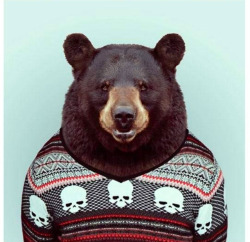 Hip, happy bear in knit.