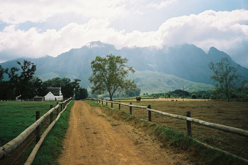 arquerio:  The Farm by john schoolcraft on Flickr.