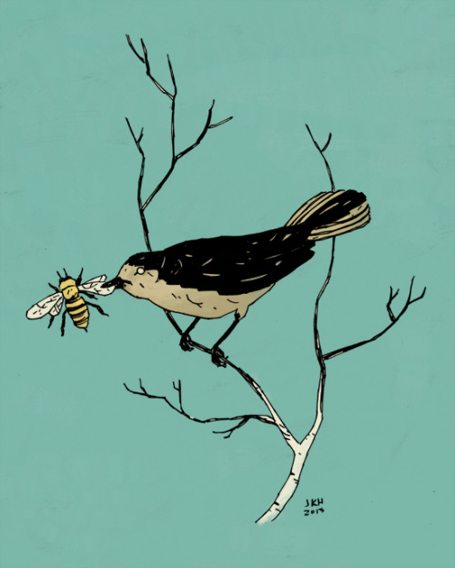 josephsubmarine:  worrystories:  Bird and Bee #3  bzzz