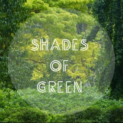 sharlotteee:  Shades of Green 🌿🍃🌱🌳 #nature #greenery #green #tree #grass #shade