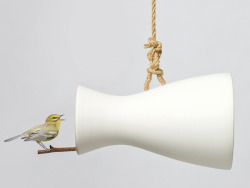 Musical Home For Birds Radhika Seth, yankodesign.com The Nature Speaker is a simple perch shaped like a loudspeaker of sorts. It not only offers a safe haven for the little birds but also amplifies their chirps for you to enjoy. I know of many places that use these artificial bird sounds to create a…