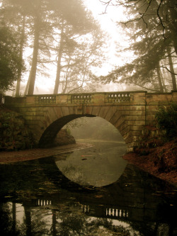 mystic-revelations:  Bridges of Lancashire County (by alissa petrelli)