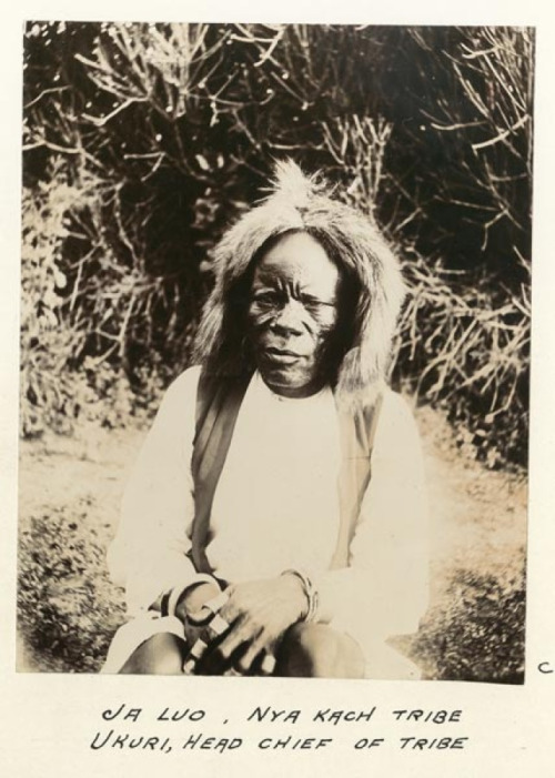 khenti-renaissance:  Vintage Photography: Kenya, 1902  A portrait of Chief Kere, of the Nyakach clan of the Luo. He is adorned in a headdress of authority made of a lion's mane. Notice that he is also seen adorned with armlets and golden rings, very special in those days.