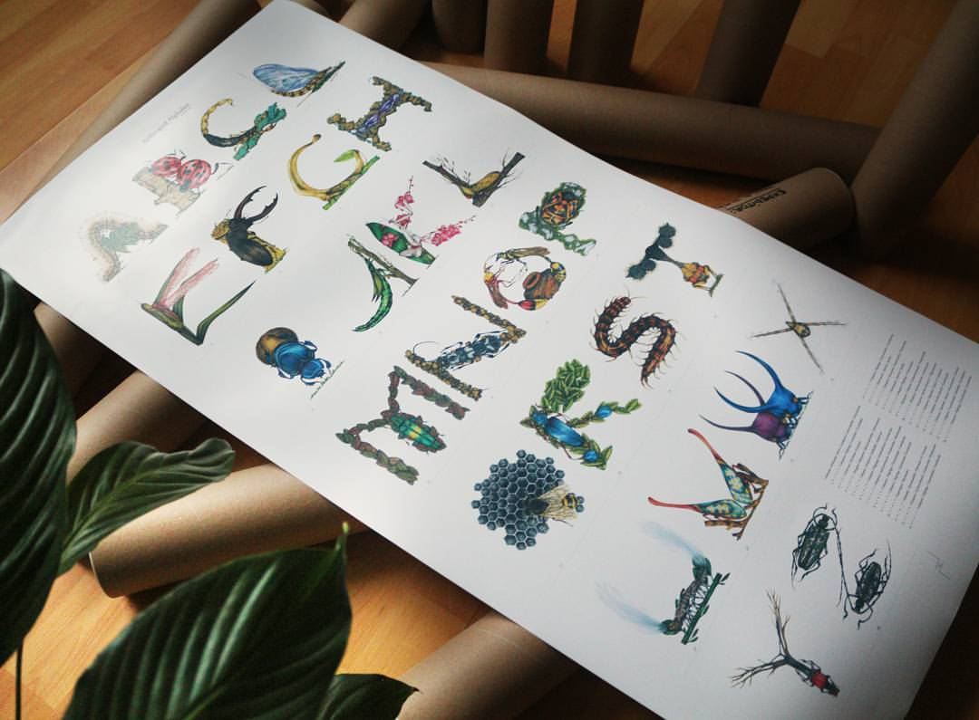 The first orders of the Arthropod Alphabet are already on their way to new homes. You can order your own copy here: http://pauladuta.bigcartel.com/ #type #poster #insects #drawing #artofdrawingg #illustration #art #coloredpencils #colors #typography...