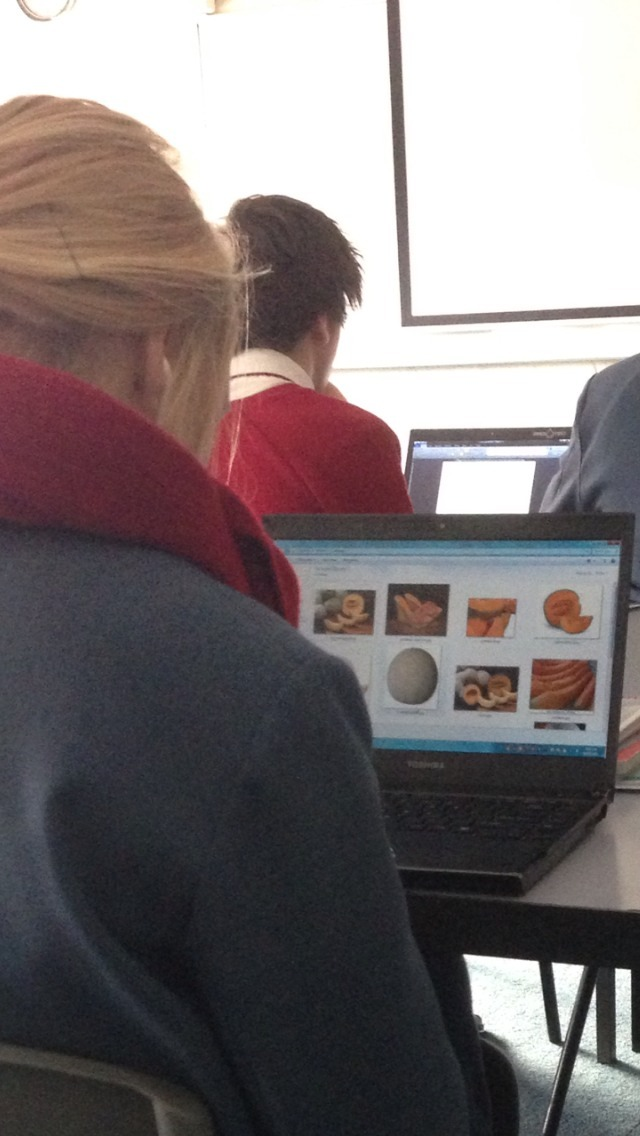 pizza:  this girl in my class sat there staring at pictures of cantaloupes the whole lesson