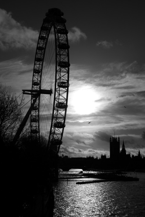 London Eye late afternoon