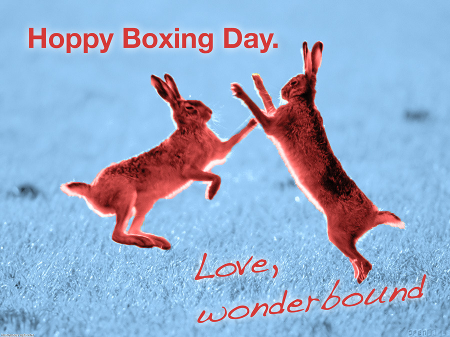 Hoppy Boxing Day. Love,Wonderbound Original image source: http://openwalls.com/image?id=12660 CC License by Anonymous.