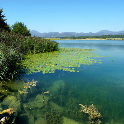 Velenje lake - Jewels of nature (by B℮n)