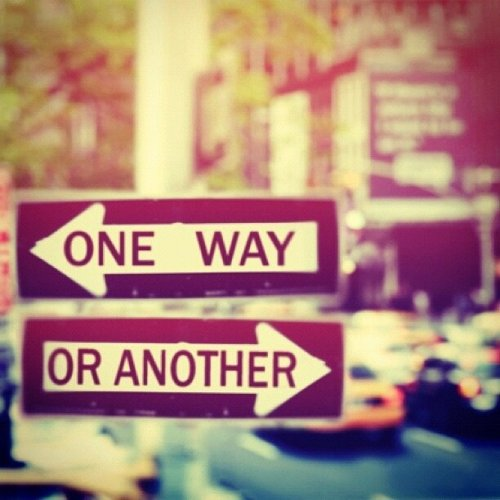 dutchcarrot:  One Way Or Another !