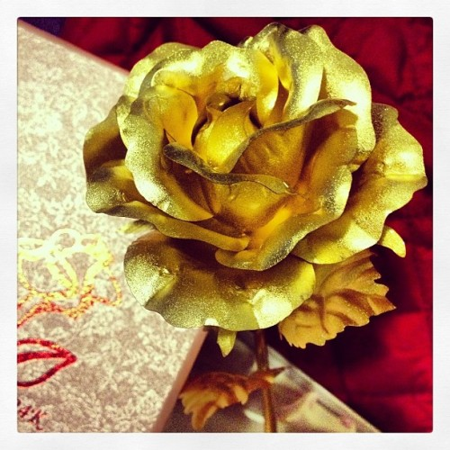 the golden rose i got for my momma for mother's day #goldenrose #mothersday #bestofthebest #supermom (at Maison de Madrillejos)