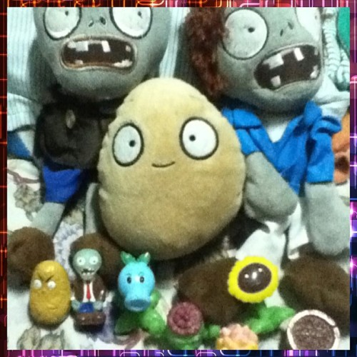 franz allen's collections .#pvz #addict #cute #plushies