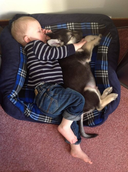 cute-overload:  My son and his puppy, friends for life. http://cute-overload.tumblr.com