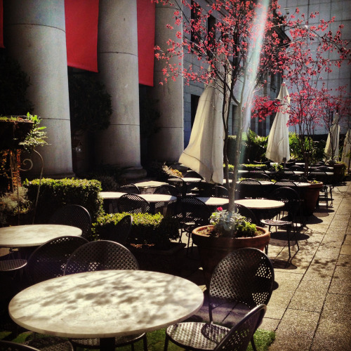 One of the best sun-soaked, urban patios in Vancouver at the Vancouver Art Gallery.