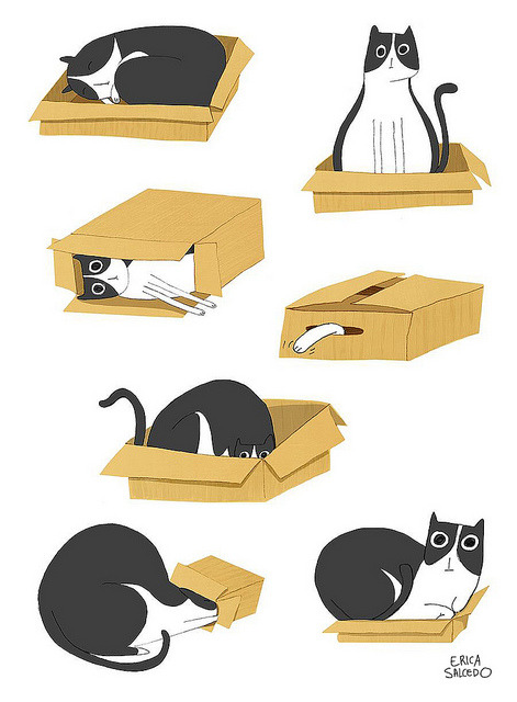 thingssheloves:  Tha cat and the box by Erica Salcedo Illustration on Flickr.