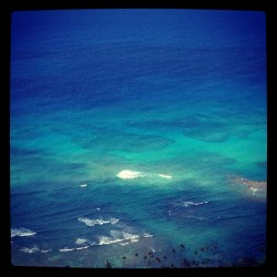 #reef #terqoisewater #vacation #oahu #amazing #crystalclear #hawaii #island #808 #paradise  (at Diamond Head Summit)