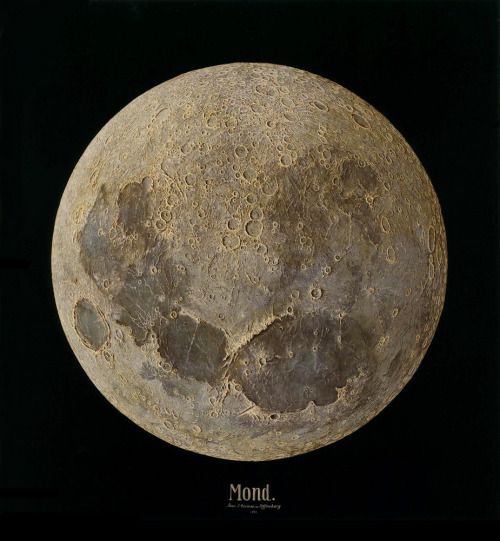 thousandflowerettes:  janitoroflunacy: goo22:are2:The Moon — Vincent Grimm (1888)  Voici la lune, the moon, der Mond.  In German, moon is a masculine noun and the sun is feminine.  You might find this the most boring fact of the day, but that's only because you don't understand the beauty of etymology. :)