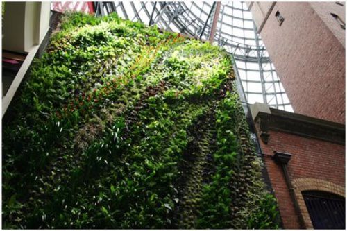 vertical garden by Patrick Blanc in Melbourne, Australia  from re-nest via enenome