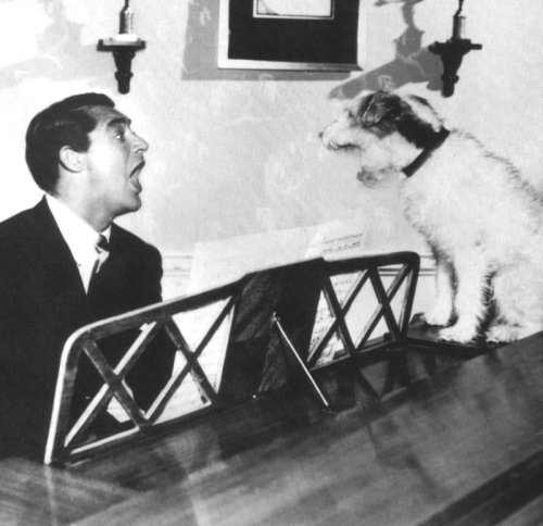 "Cary Grant & dog occupy themselves as best they can (via pictopia) ""My formula for living is quite simple. I get up in the morning and I go to bed at night. In between, I occupy myself as best I can."" -Cary Grant"