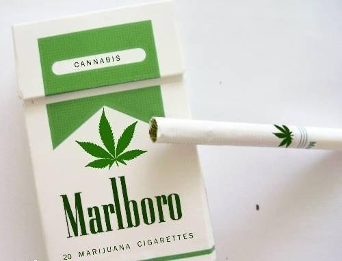 ¿un cigarrillo? imagenes graciosas